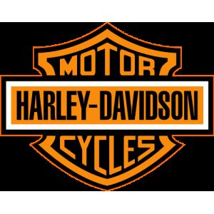 Reprogrammation moteur Harley-Davidson